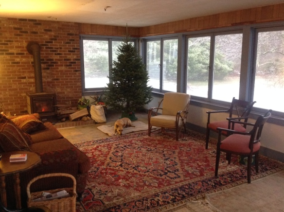 porch room with tree